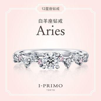 I-PRIMO:Aries