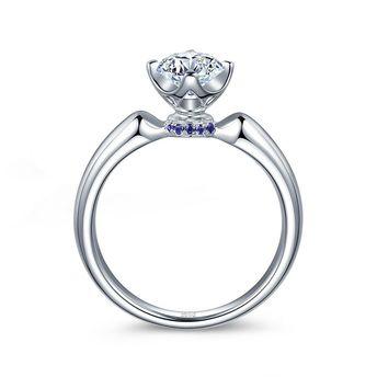 钻石小鸟:北极光 月光女王-铂900钻石戒托
