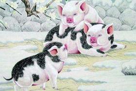 属猪结婚吉日