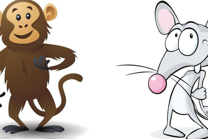 属鼠的和属猴的属相最配吗?