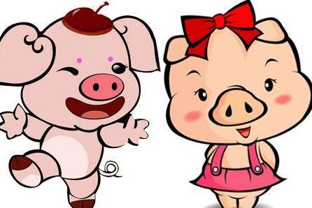 属鼠的和属猪的属相最配吗?