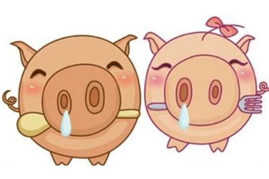属牛的和属猪的属相最配吗?
