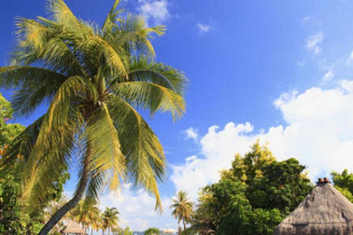 国内度蜜月的地方有着较多选择。选择海洋沙滩景点的新人较多,去往城市排名是海南三亚、厦门鼓浪屿和山东青岛。也有少数人选择浏览城市景观,如去云南丽江和四川成都等。那今天我要推荐的是冬季蜜月首选的地方。