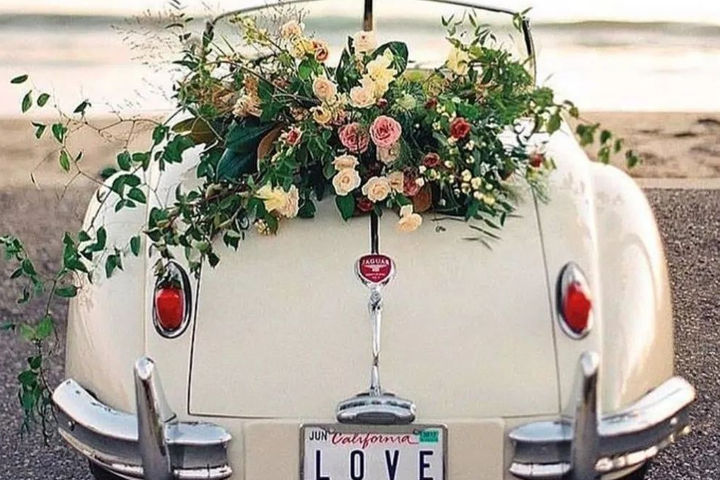 婚车在哪找