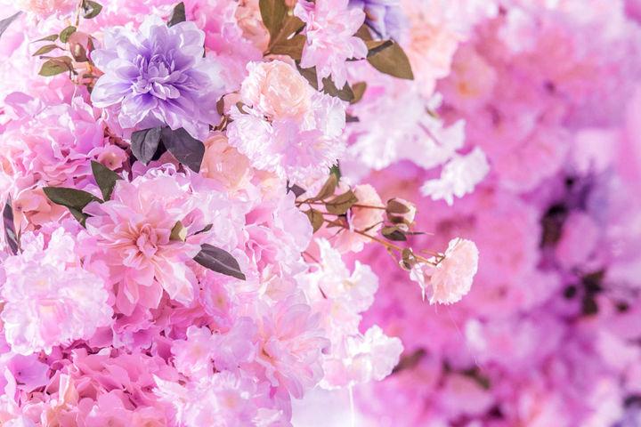 高端粉色婚礼主题图片