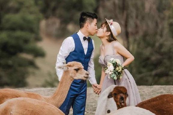 都匀婚纱摄影哪家好