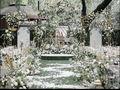 法式花园-寻觅爱